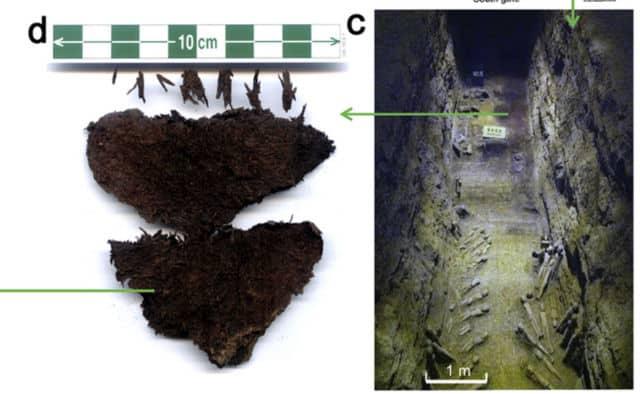 Nhà khảo cổ tìm ra trà có niên đại 2.100 năm